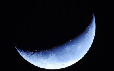 Connaissez-vous le calendrier lunaire de jardin et son usage ?